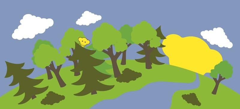 Skogen ur ett personligt perspektiv & skogsvänliga tips